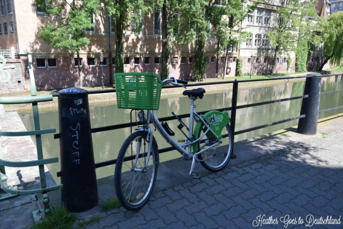 Rental bikes are eeeeeeverywhere.