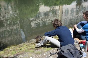Feeding the local wildlife.