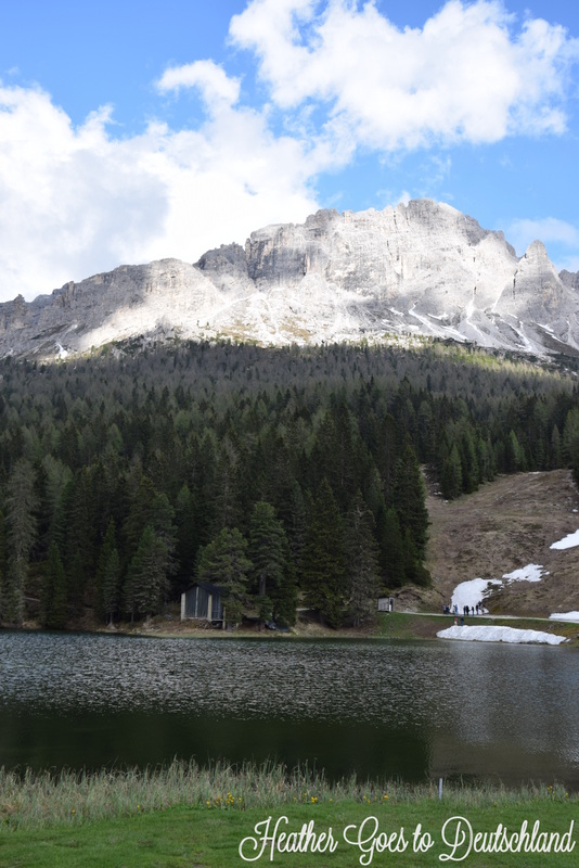 misurinasee1