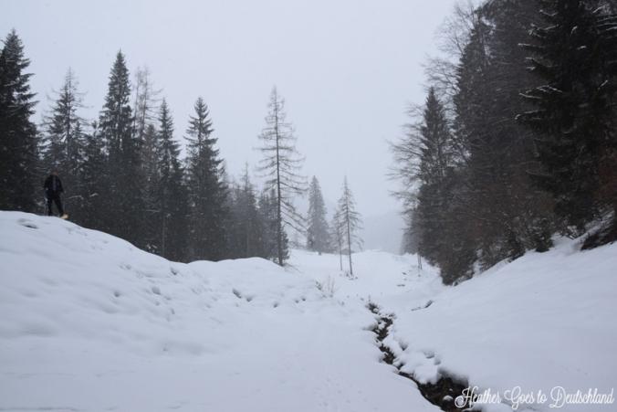 Bavarian Alps, 2016